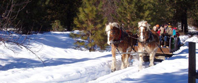 SLEIGH RIDE WINTER front page